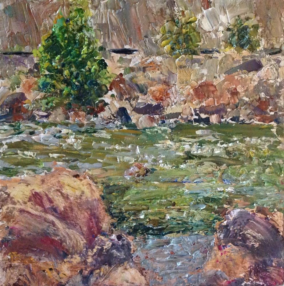 """Colorado River"" original fine art by Judy Usavage"