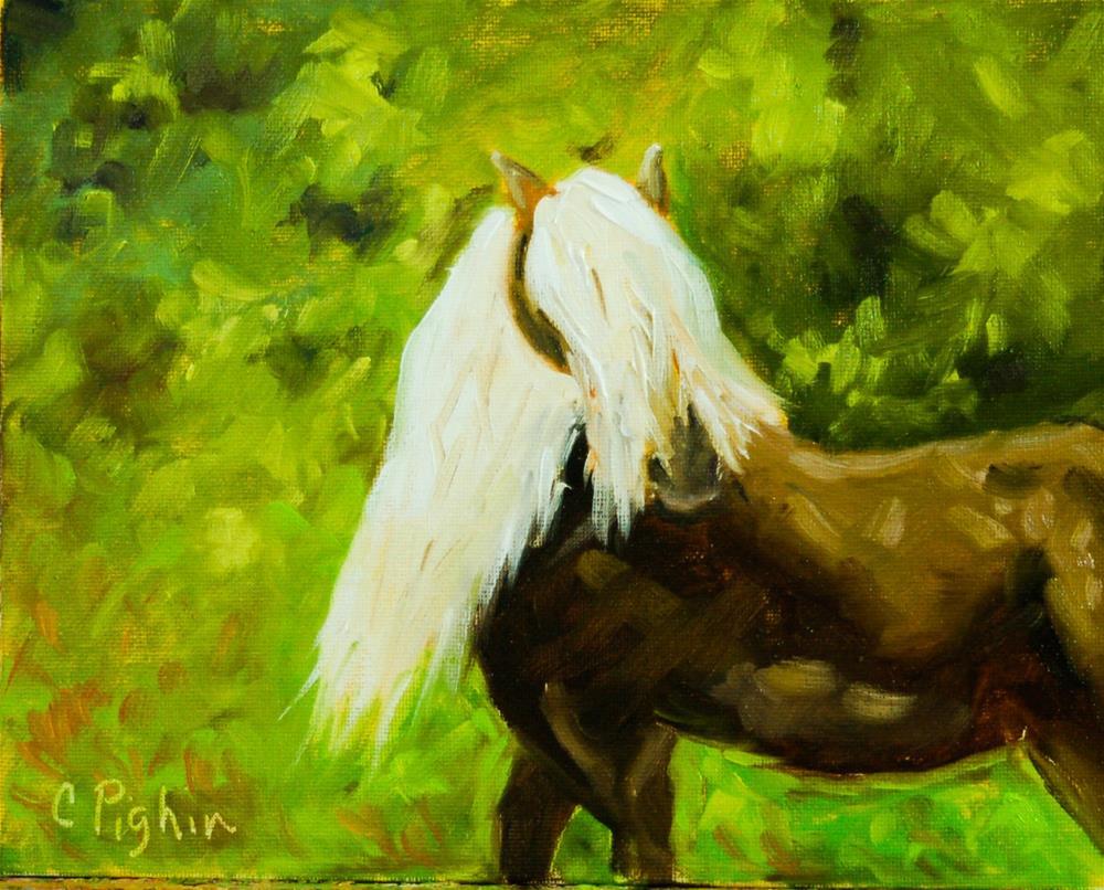 """Wild Pony"" original fine art by Carol Pighin"