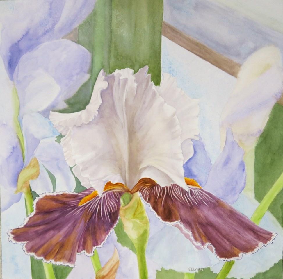 """Iris"" original fine art by Elaine Lynest"