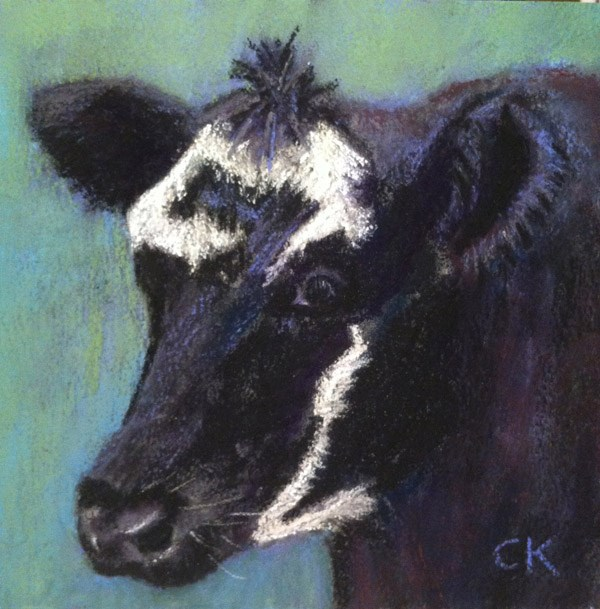 """Schoharie Cow"" original fine art by Cristine Kossow"