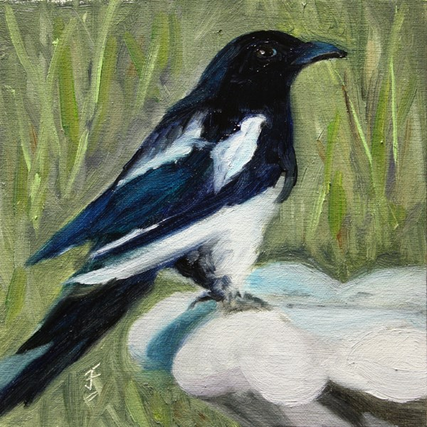 """Magpie"" original fine art by Jane Frederick"