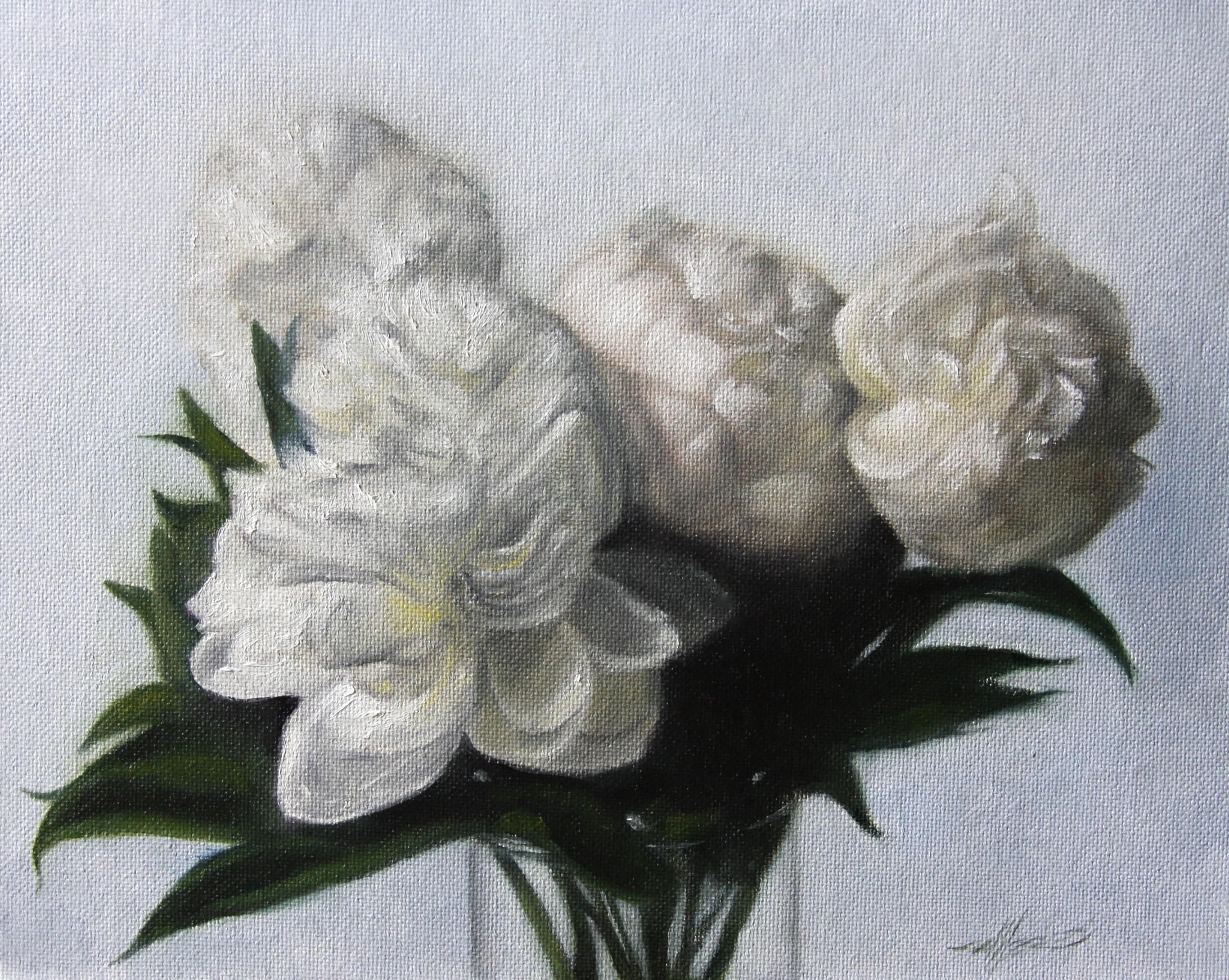 """Peonies"" original fine art by Jonathan Aller"