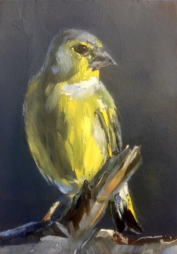 """Green Finch"" original fine art by Gary Bruton"