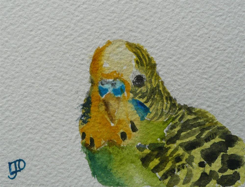 """Budgerigar"" original fine art by Leanne Owen"
