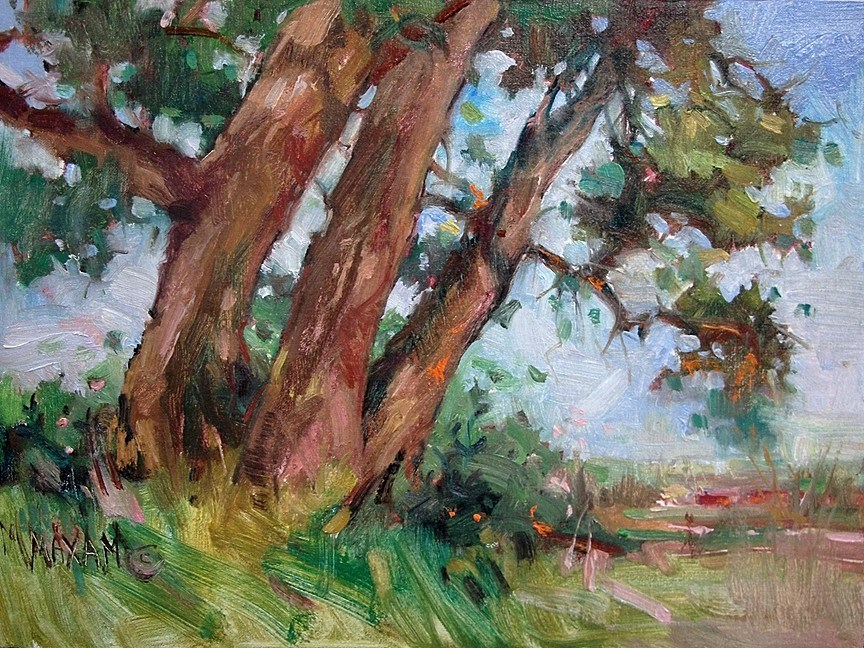 """Trio - Bighorn Cottonwoods"" original fine art by Mary Maxam"