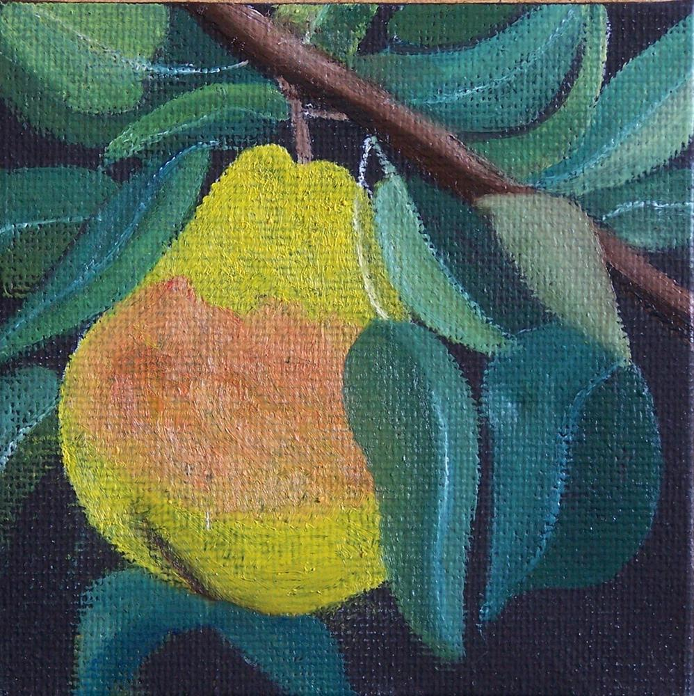 """Pear on a limb #2"" original fine art by John Marcum"