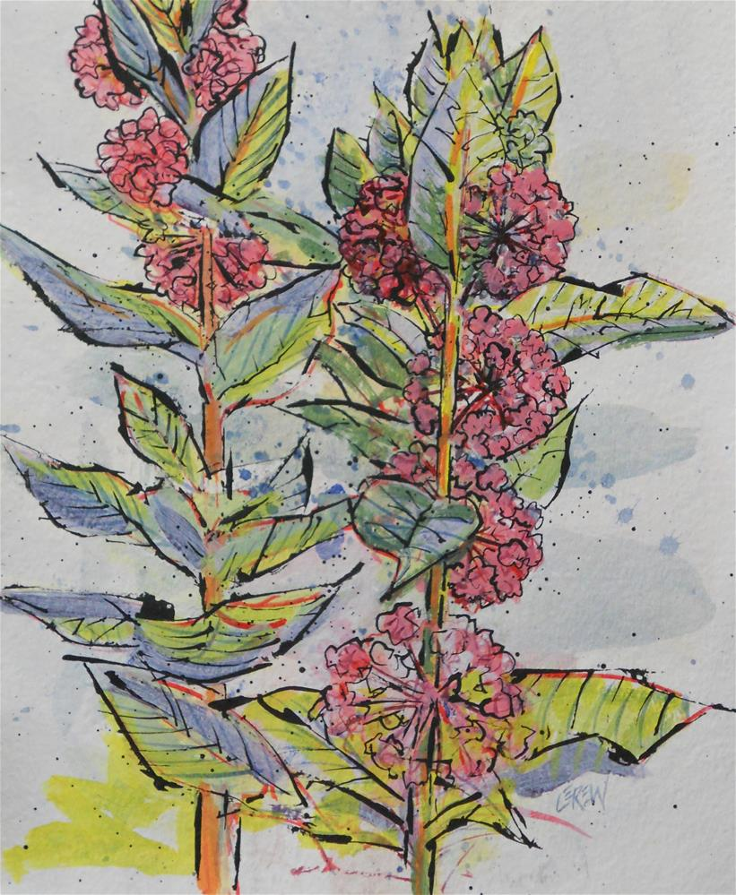 """Milkweed Floral by Larry Lerew 130708"" original fine art by Larry Lerew"