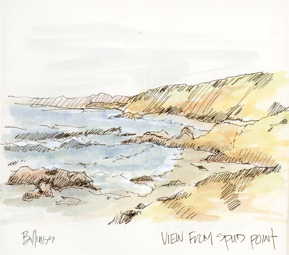 """Spud Point Sketch"" original fine art by Susanne Billings"