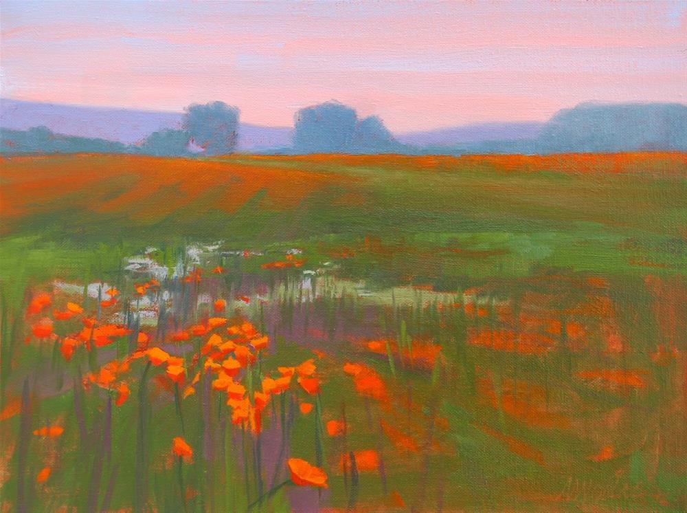 """""""#55 Sitting in poppies"""" original fine art by Nancy Wallace"""