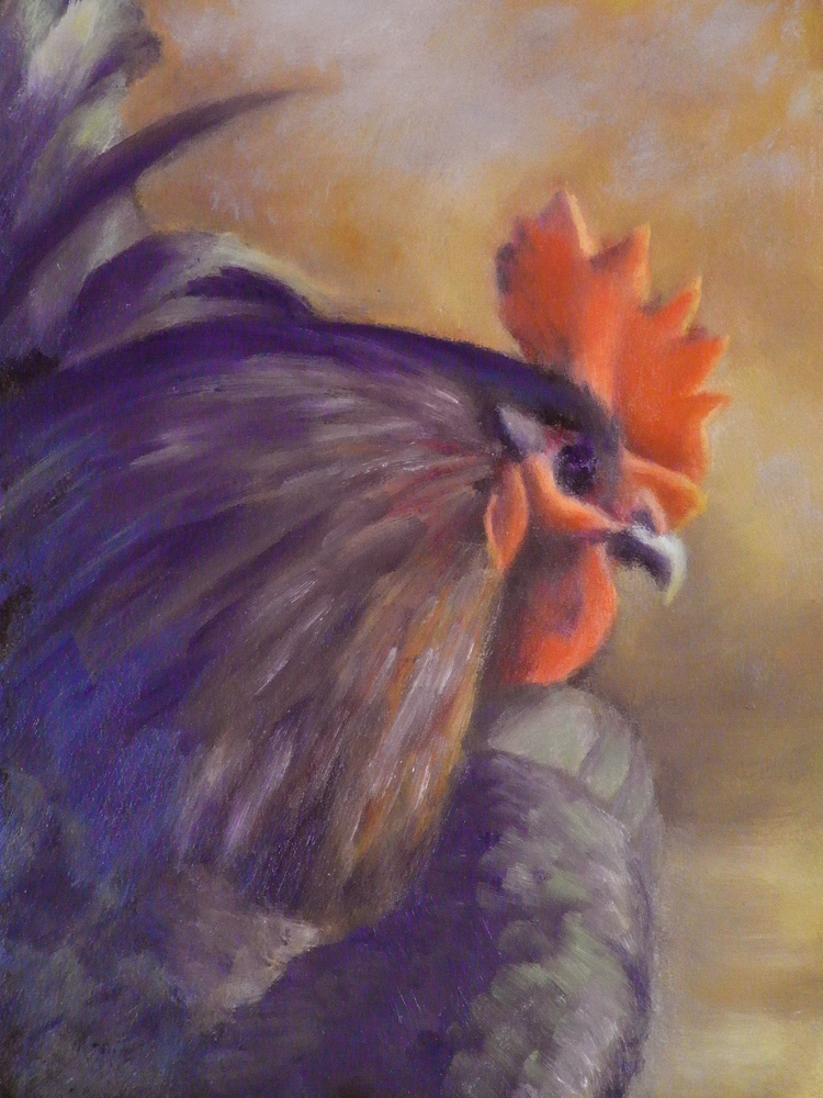 """Preening Rooster"" original fine art by Naomi Gray"