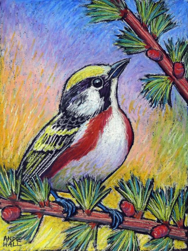 """""""Chestnut Sided Warbler"""" original fine art by Ande Hall"""