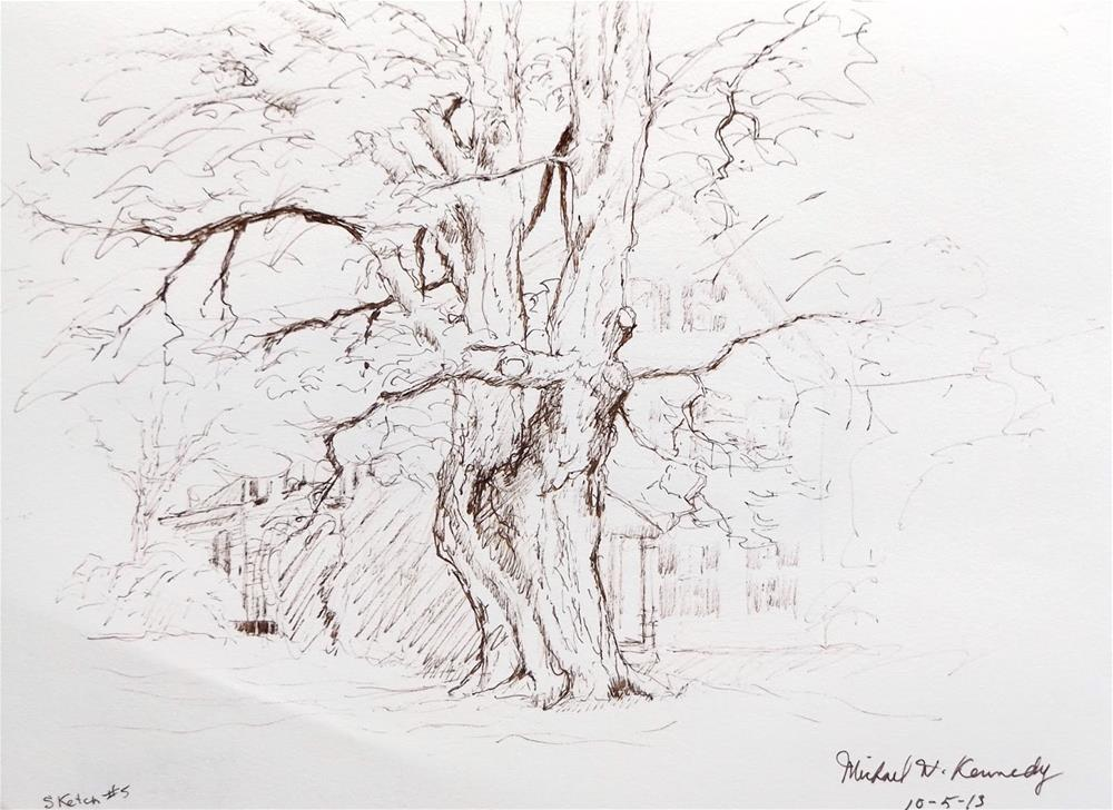 """Old Tree"" original fine art by Michael Kennedy"