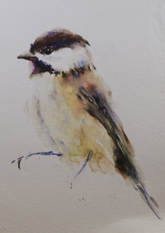 """Chickadee Sketch"" original fine art by Sue Churchgrant"