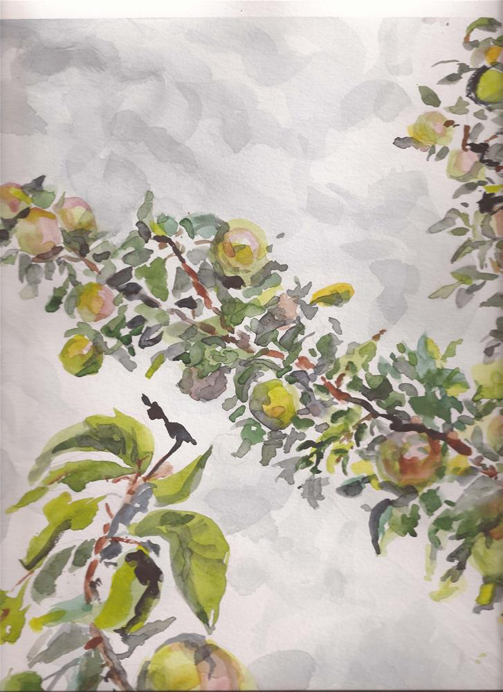 """Wild Apples free shipping"" original fine art by jean krueger"