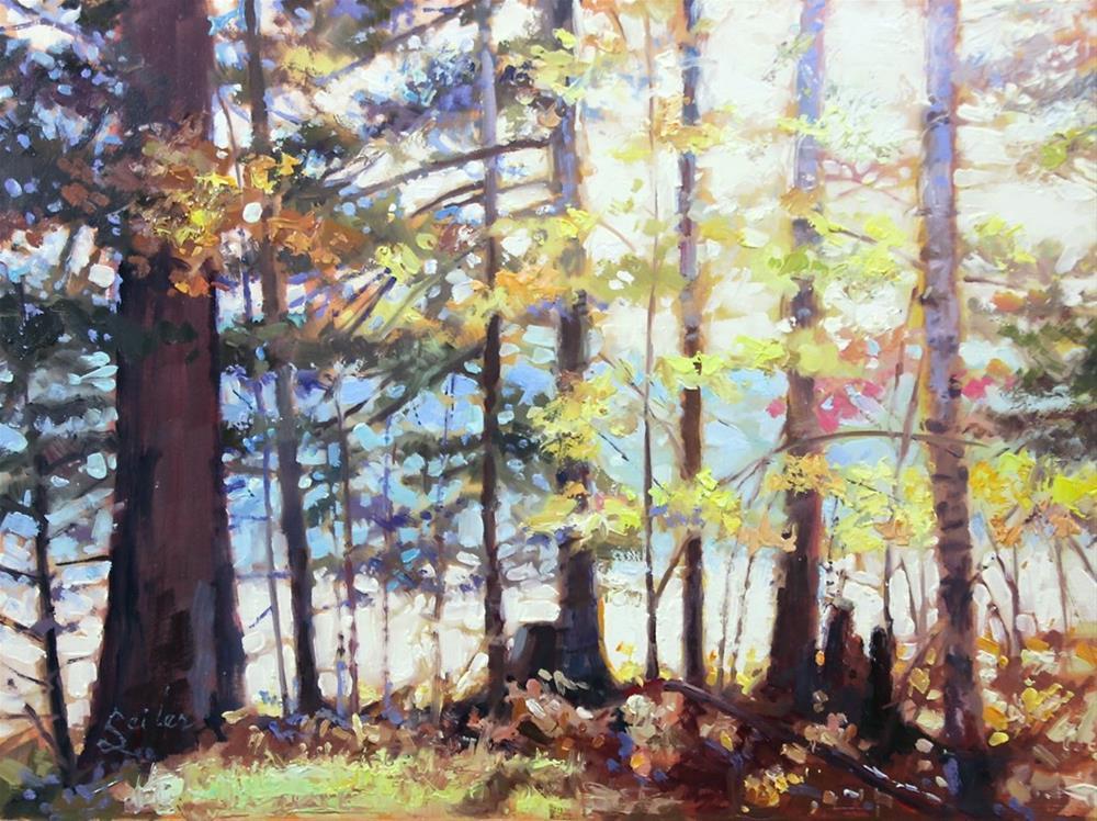 """""""UP Shoreline Sunblast"""" original fine art by Larry Seiler"""