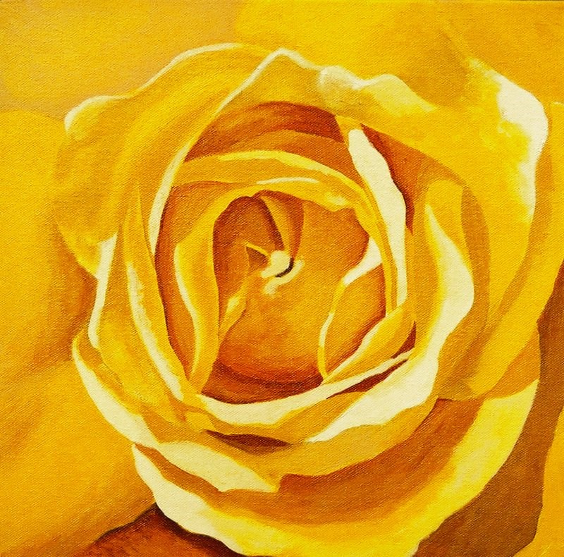 """Yellow Rose Study #2"" original fine art by Lisa Wiertel"