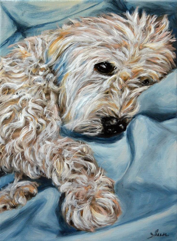 """wheaten Terrier"" original fine art by Sun Sohovich"