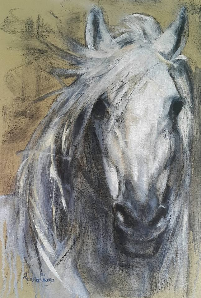 """Haunted horse"" original fine art by Rentia Coetzee"