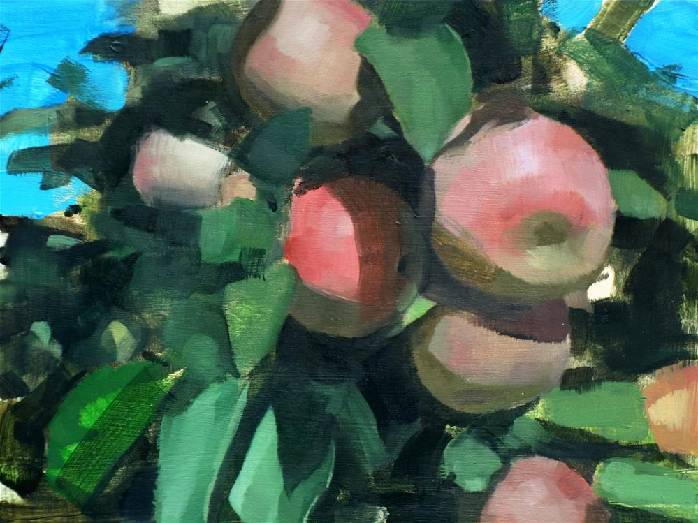 """Apple Tree, Mystic, CT (no.119)"" original fine art by Michael William"