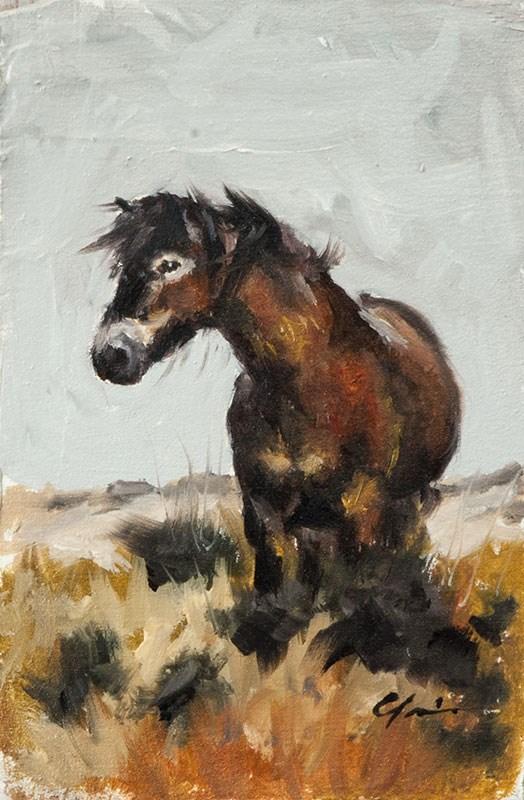 """Windswept Pony"" original fine art by Clair Hartmann"