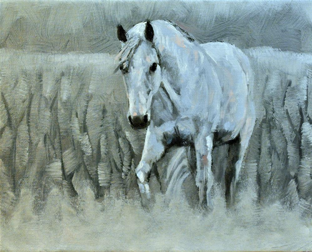 """White on White 8x10 oil on canvas in black frame"" original fine art by David Larson Evans"