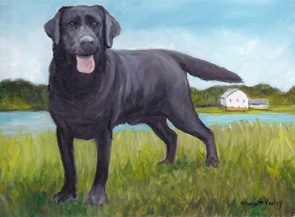 """Black Labrador retriever"" original fine art by Charlotte Yealey"