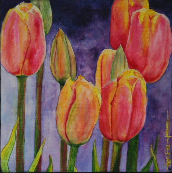 """Backlit Tulips"" original fine art by Jana Johnson"