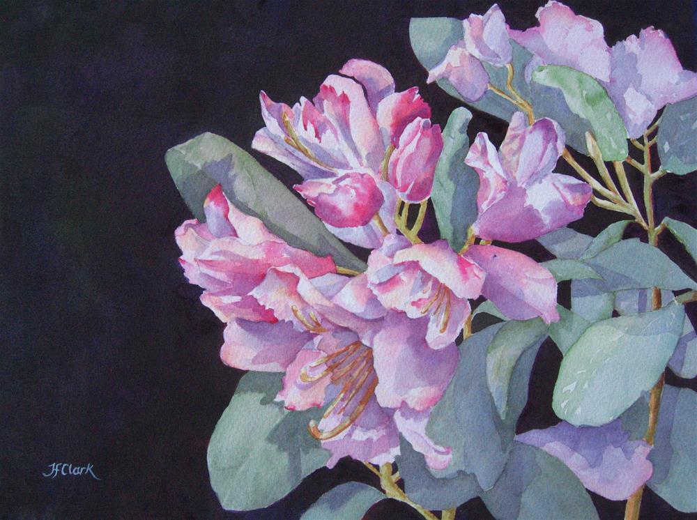 """Sunday, Rhododendrons"" original fine art by Judith Freeman Clark"