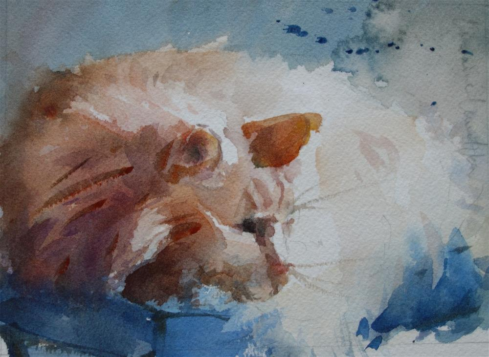 """Curled Up Cat"" original fine art by Lorraine Lewitzka"