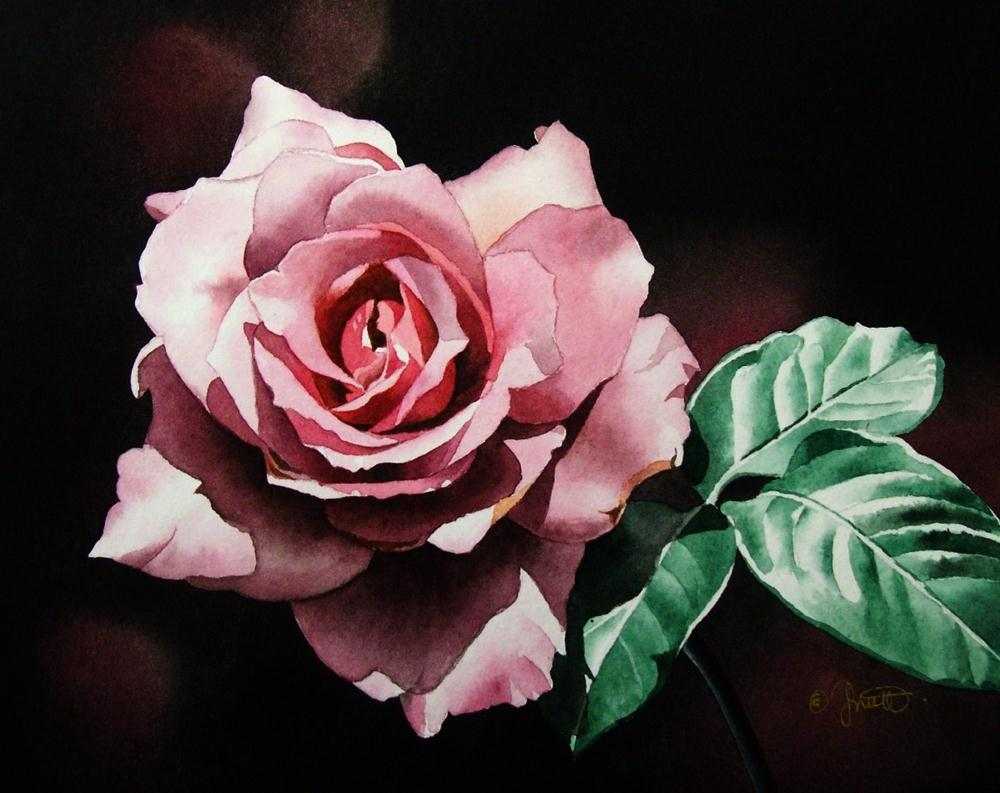 """Dark Pink Rose"" original fine art by Jacqueline Gnott, whs"