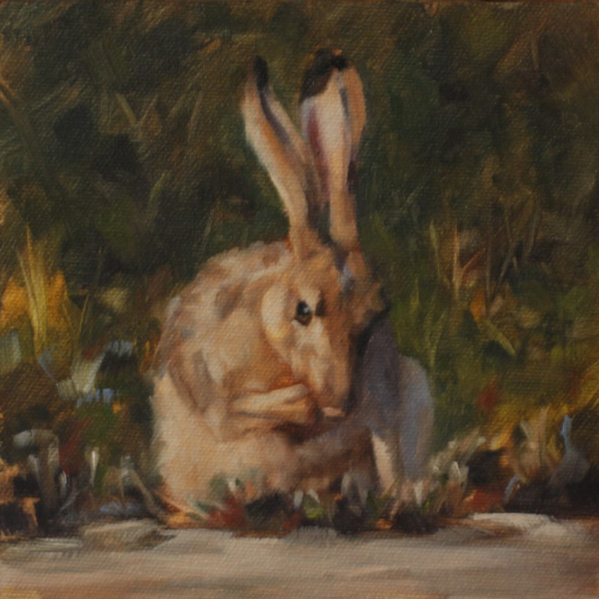 """Jackrabbit Clean Up"" original fine art by Pamela Poll"