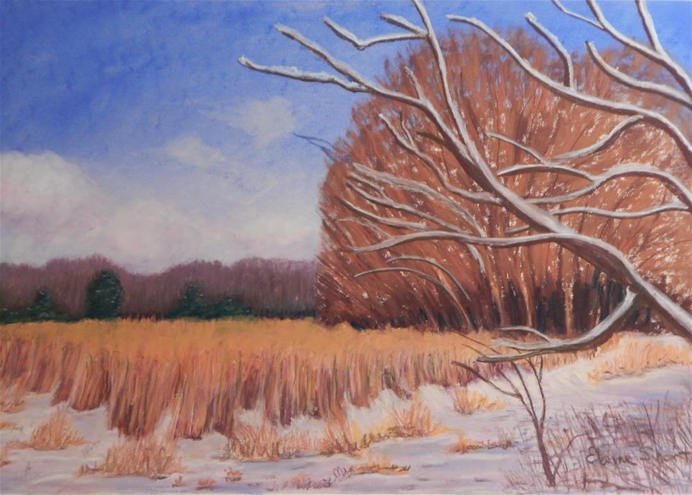 """""""A Winter's Walk"""" original fine art by Elaine Shortall"""