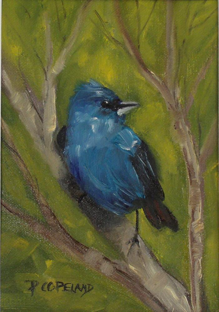 """Bunting Ruffled"" original fine art by Pamela H. Copeland"