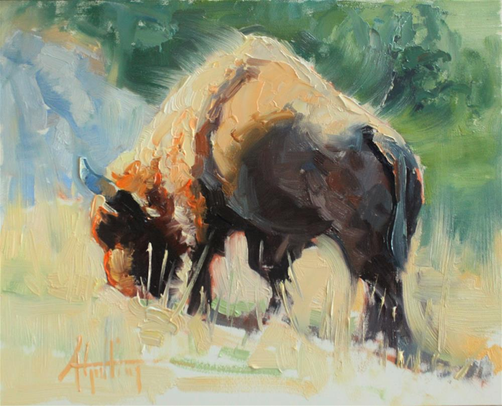 """Buffalo Study #2"" original fine art by Abigail Gutting"