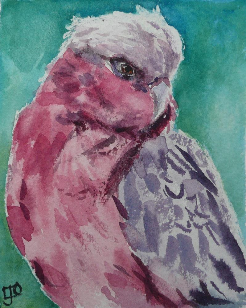 """Galah"" original fine art by Leanne Owen"