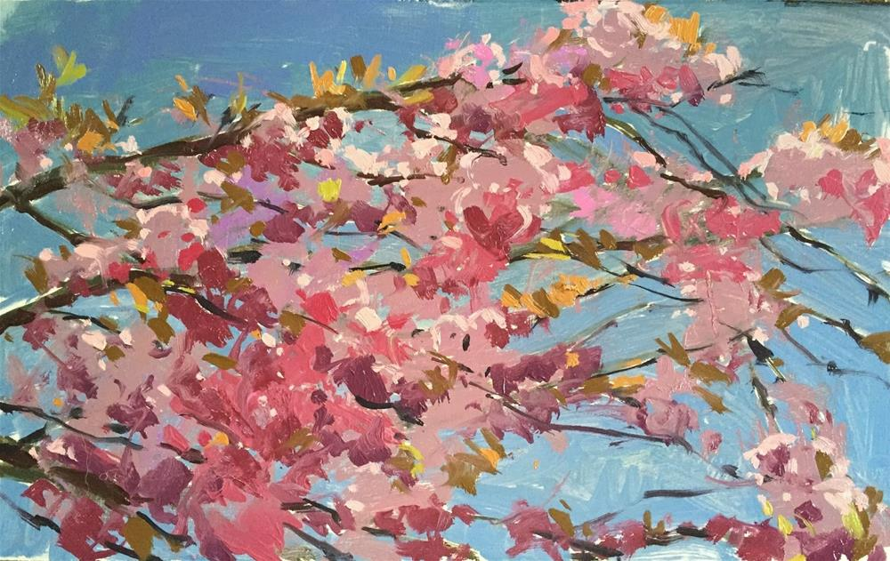 """Cherry blossom"" original fine art by Haidee-Jo Summers"