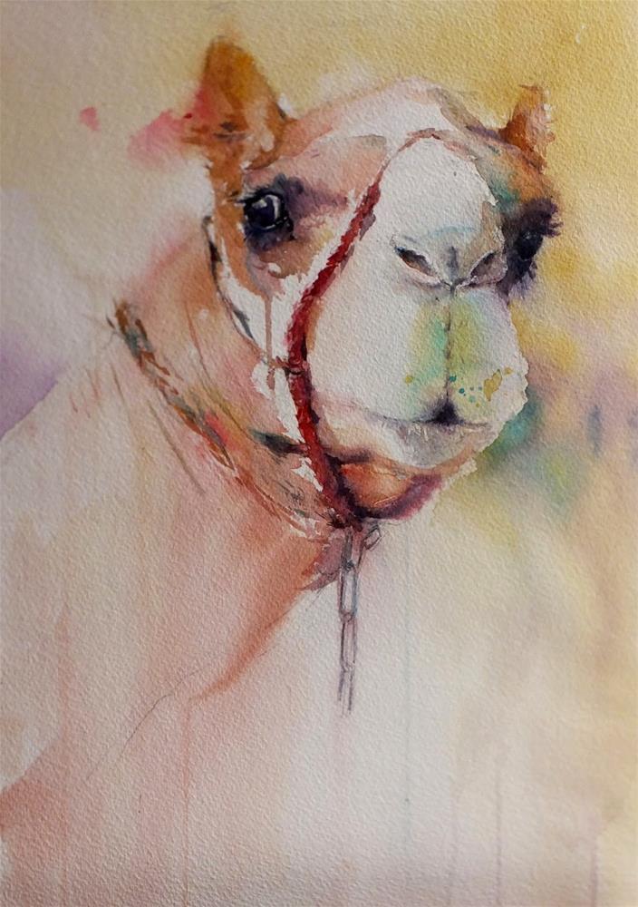 """All Ain Camel racetrack 6/7"" original fine art by Midori Yoshino"