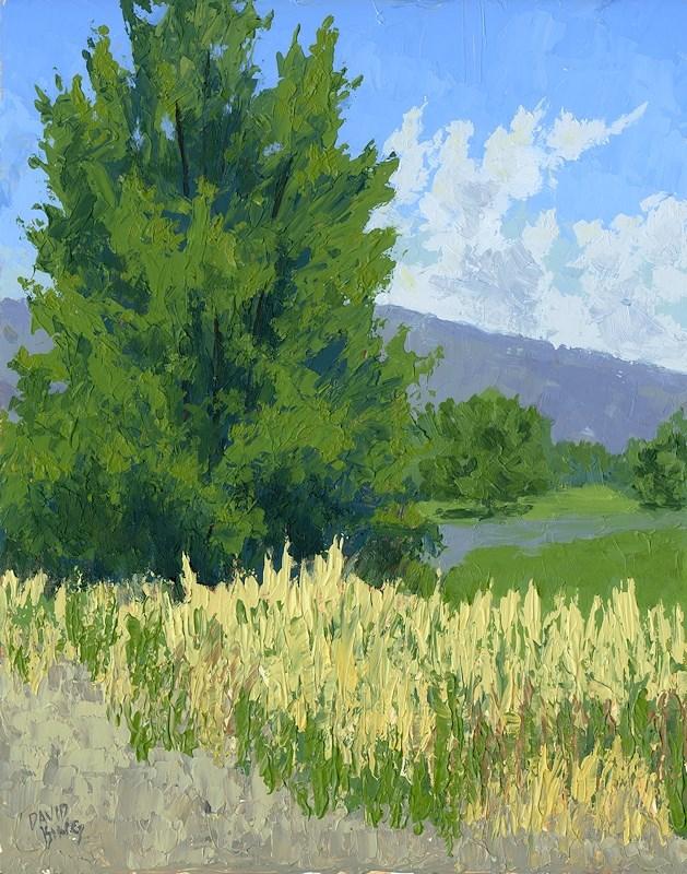 """""""Summer Tree"""" original fine art by David King"""