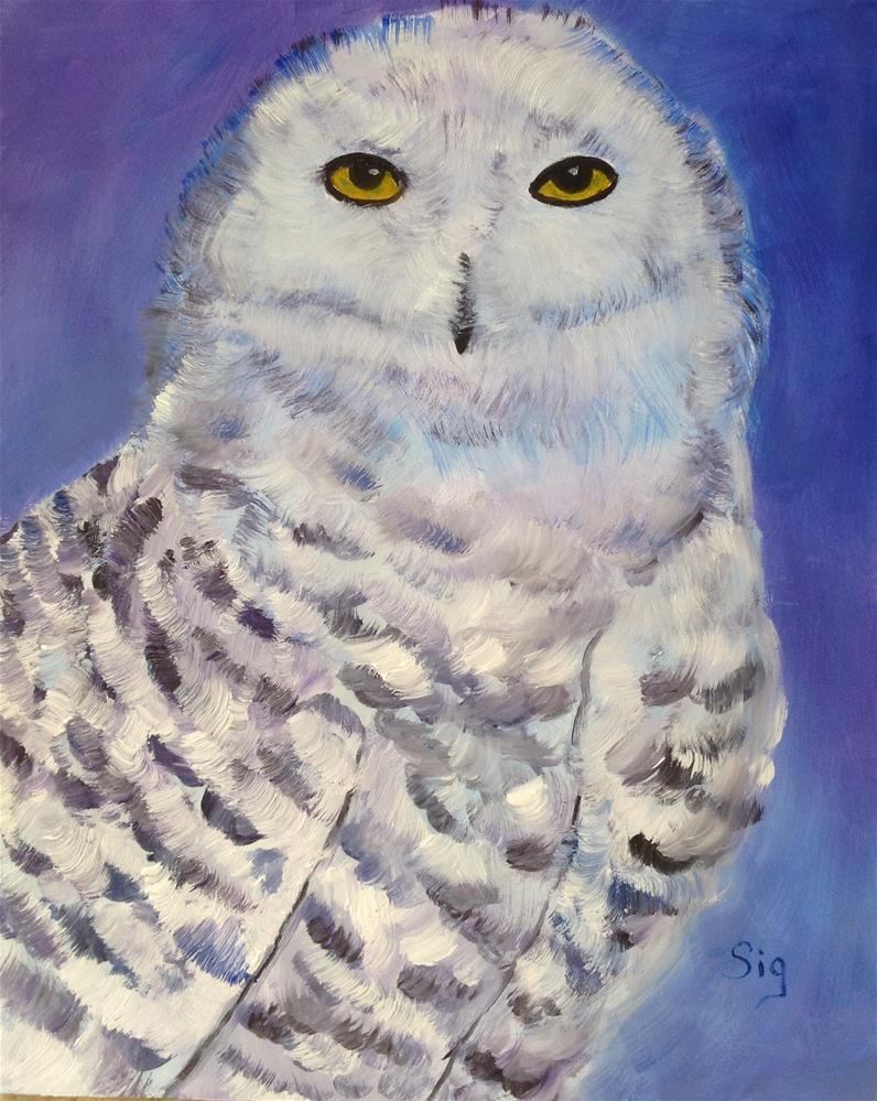 """White Owl"" original fine art by Sigrid Victor"
