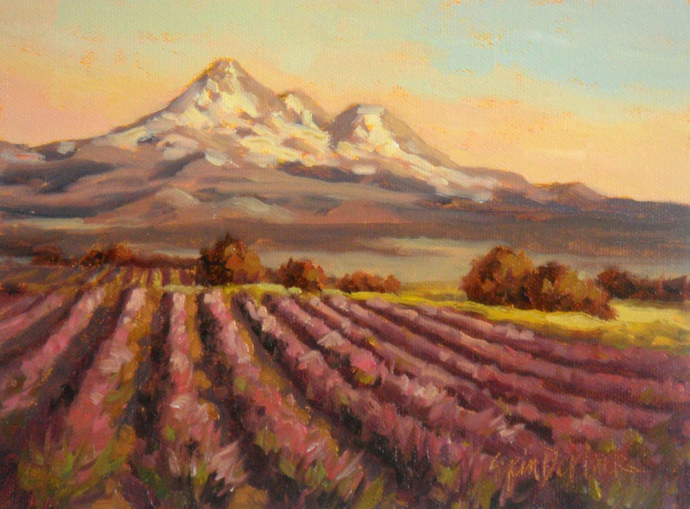 """Shasta Lavender Farm"" original fine art by Erin Dertner"