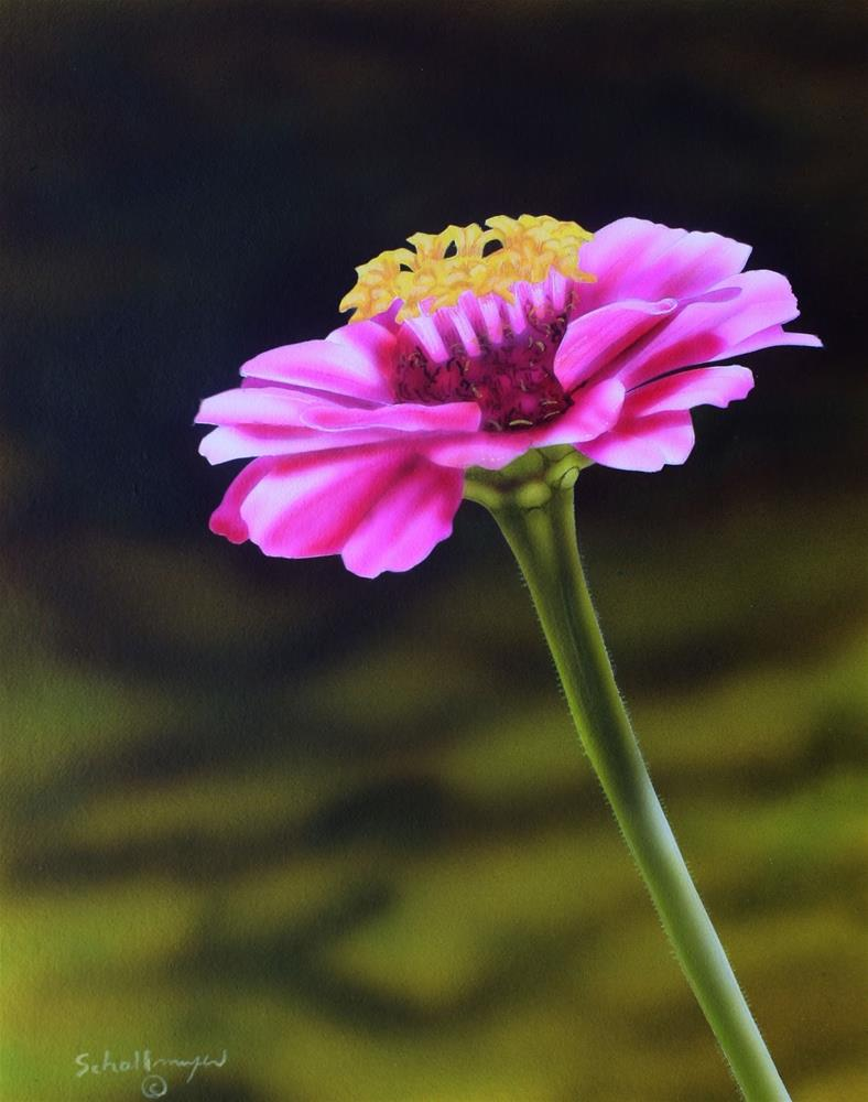 """Magenta Bloom"" original fine art by Fred Schollmeyer"