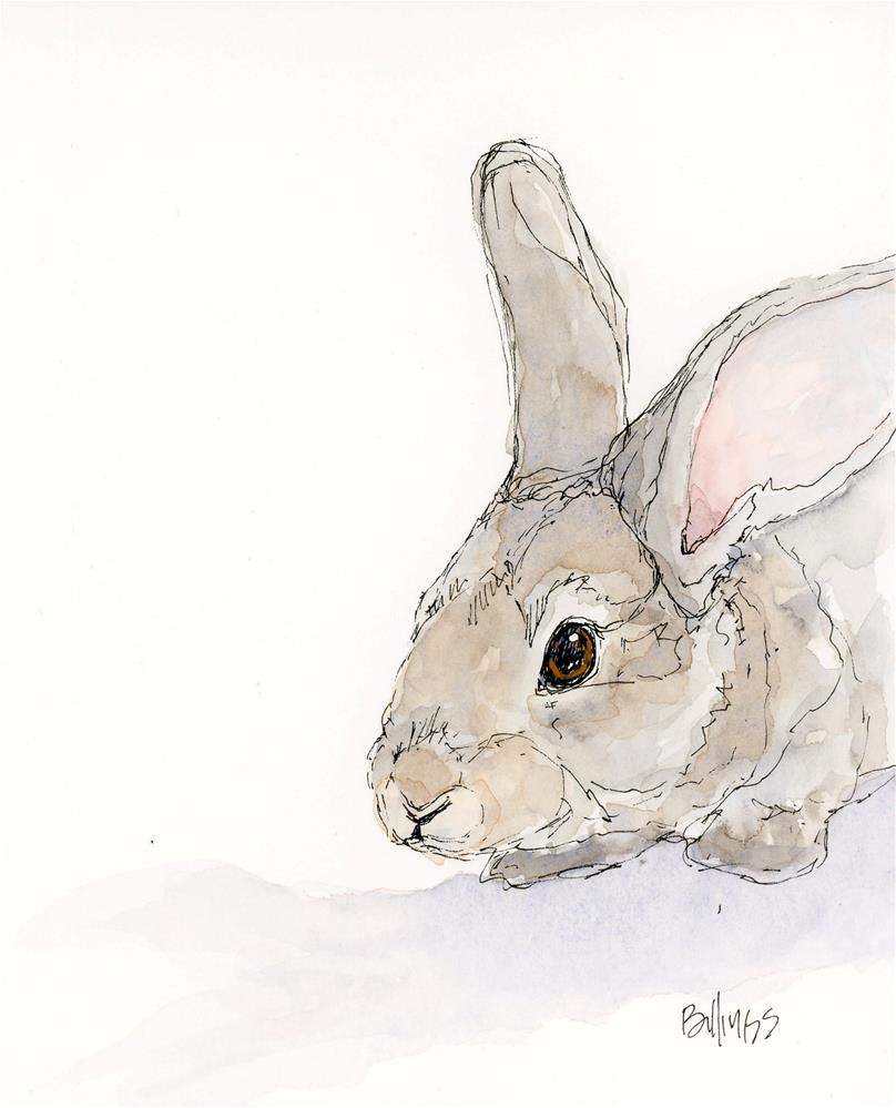 """rabbit study"" original fine art by Susanne Billings"
