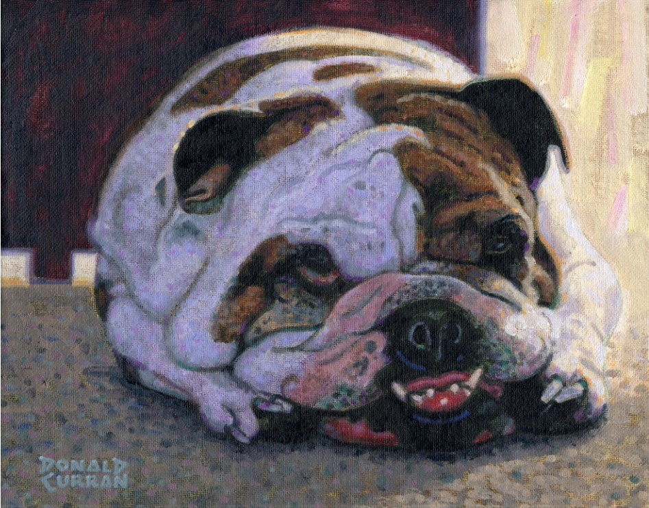 """Lazy Bulldog"" original fine art by Donald Curran"