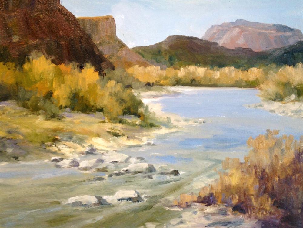 """""""Rio Grande - Big Bend National Park"""" original fine art by Tina Bohlman"""