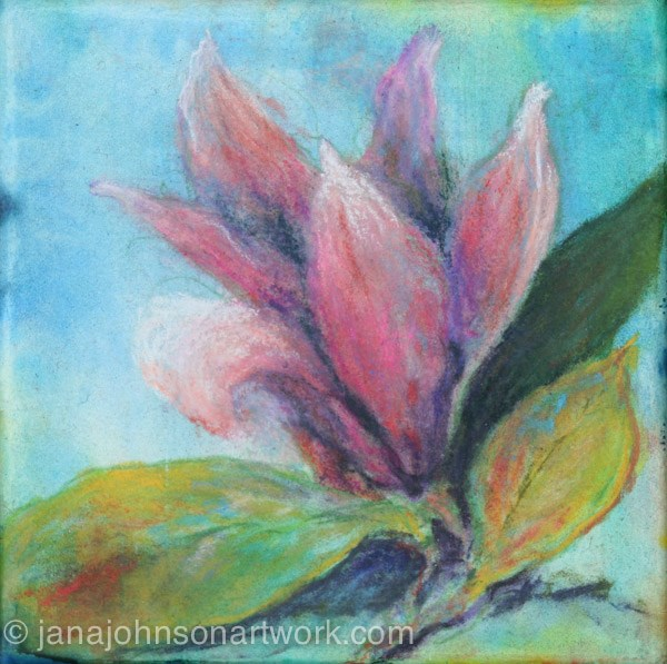 """Magnolia"" original fine art by Jana Johnson"