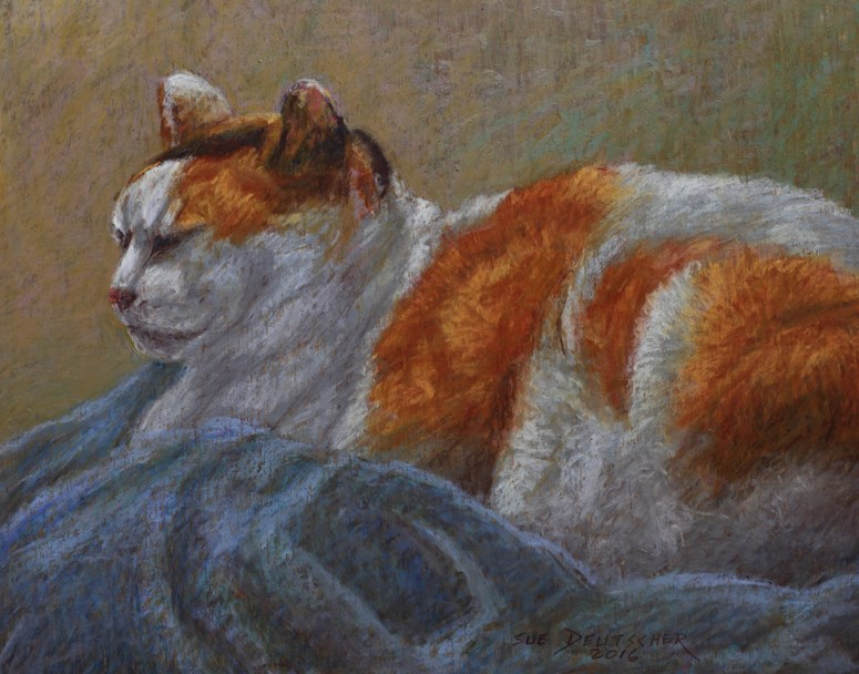"""Calico Cat who Doesn't Care about the Election"" original fine art by Sue Deutscher"