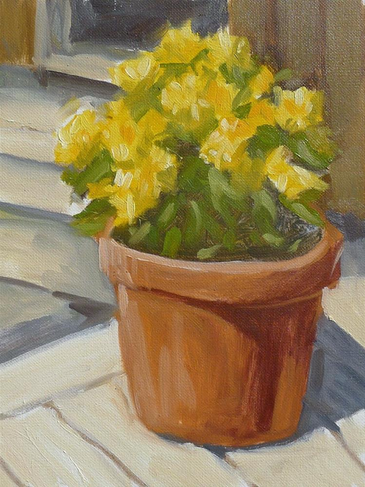 """Sunlit Mums"" original fine art by Adam Houston"