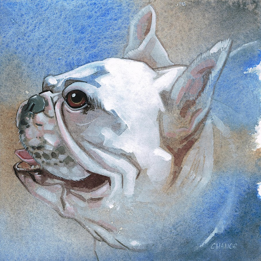 """No. 21 French Bulldog"" original fine art by Annabel Chance"