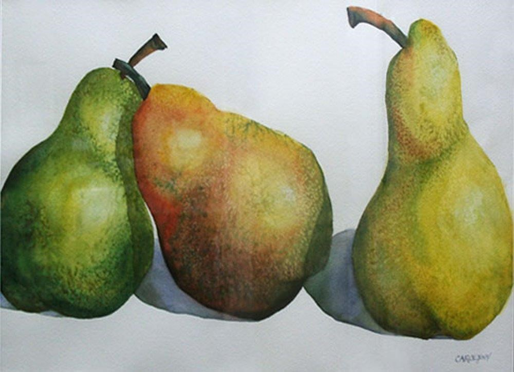 """Three Large Pears"" original fine art by Carolynn Doan"