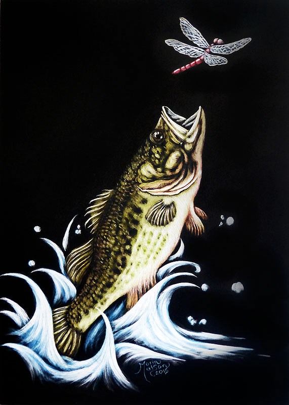 """Dragonfly & Bass"" original fine art by Monique Morin Matson"